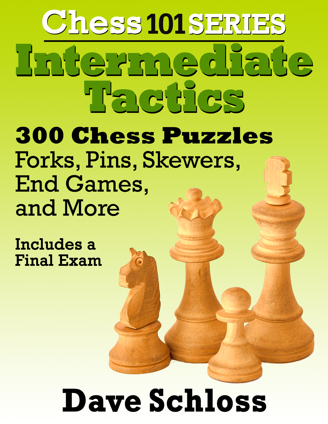 <i>300 chess tactics puzzles covering pins, forks, skewers, end games and more!</i>